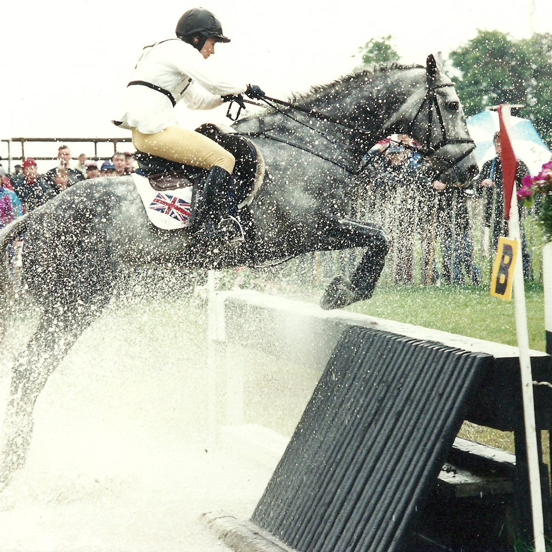 Silver Shadow, Punchestown CCI***